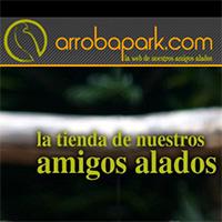 Tienda online para agapornis, ninfas y loros; desde La Eliana