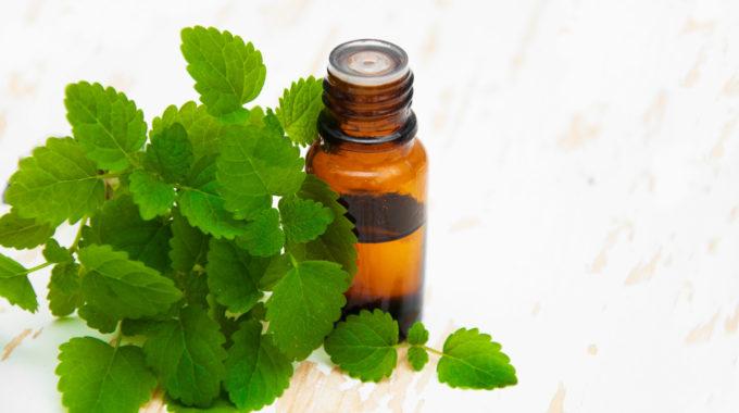 Por qué usamos la aromaterapia con aceites esenciales en nuestros espacios de trabajo