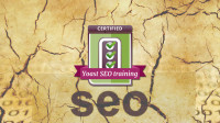 Expertos certificados en Yoast SEO para WordPress Valencia