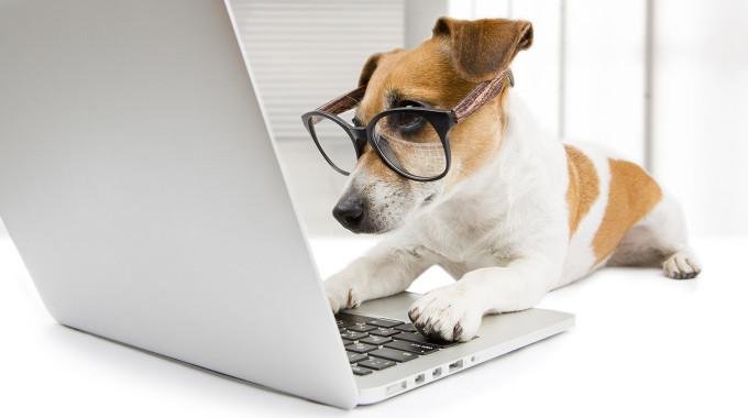 La importancia de utilizar imágenes profesionales en blogs y redes