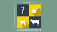 Qué es la Matriz BCG y para qué sirve