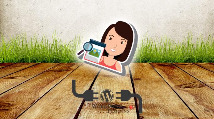Mostrar dimensiones imagen destacada en topbar | WordPress plugin