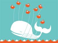 Se acaba el año 2013 en el que desapareció la ballena de Twitter